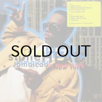 SHINEHEAD / JAMAICAN IN NEW YORK