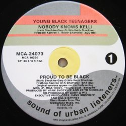 画像1: Young Black Teenagers / Nobody Knows Kelli