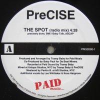 PreCISE - The Spot