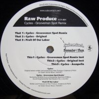 Raw Produce - Cycles (Grooveman Spot Remix)