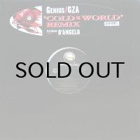 GENIUS/GZA / COLD WORLD - REMIX